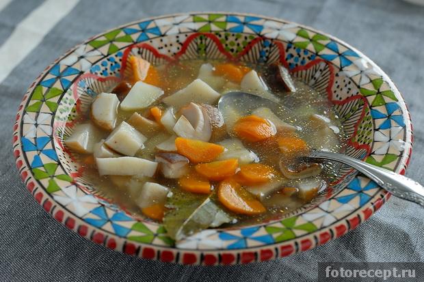 рецепты супа с белыми грибами на молоке