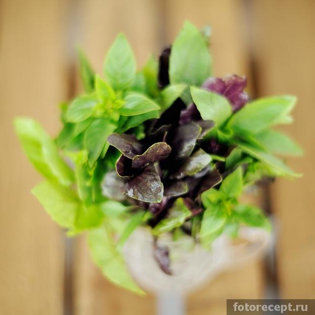 violet-pesto-05